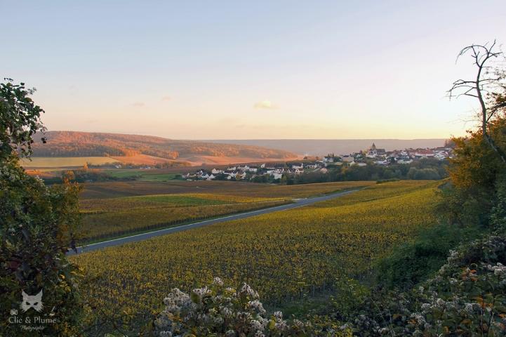 Le village depuis la route de Reims.